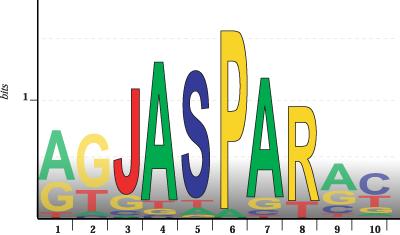 jaspar_logo